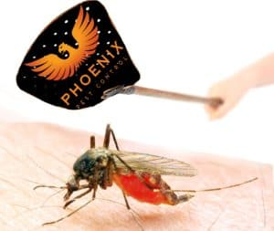 KNoxville pest control, mosquito