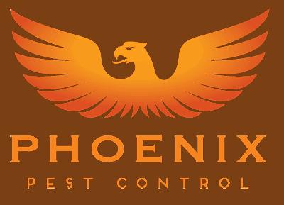 Phoenix-400x289